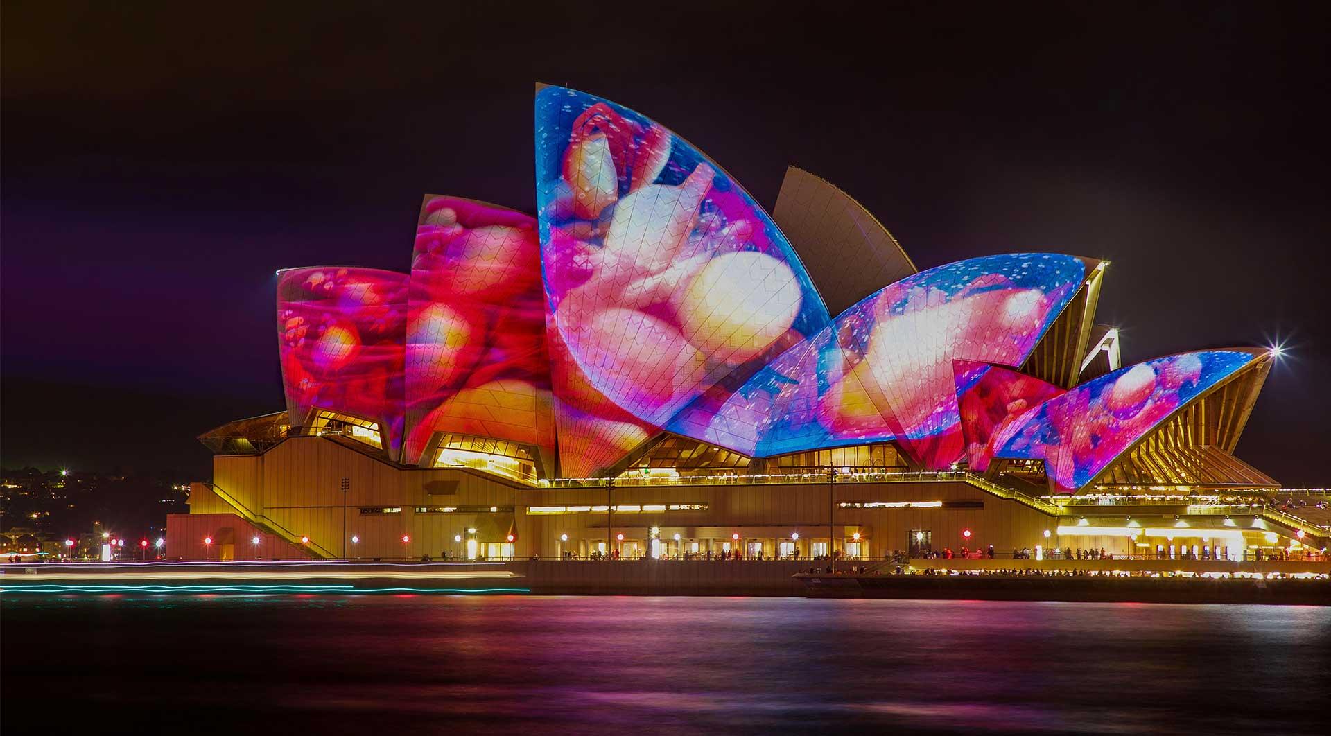 Vivid Cruises Sydney